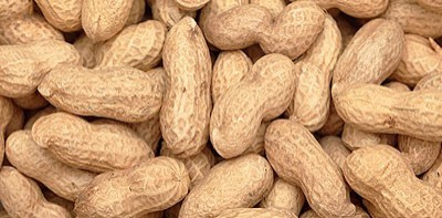 Image result for groundnut